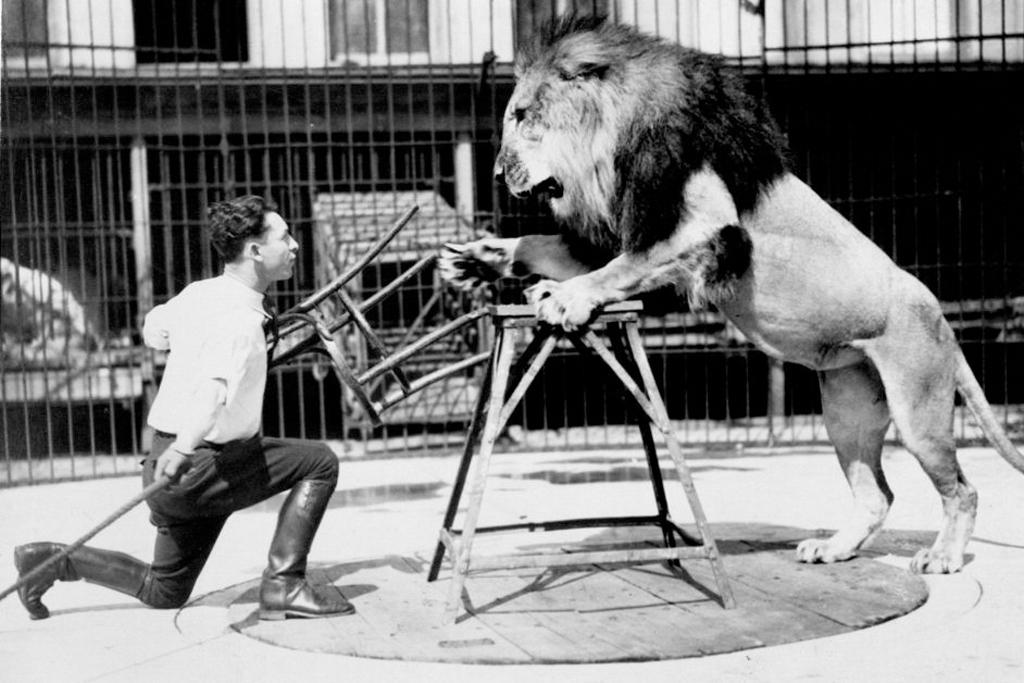 clyde-beatty-lion-tamer.jpg